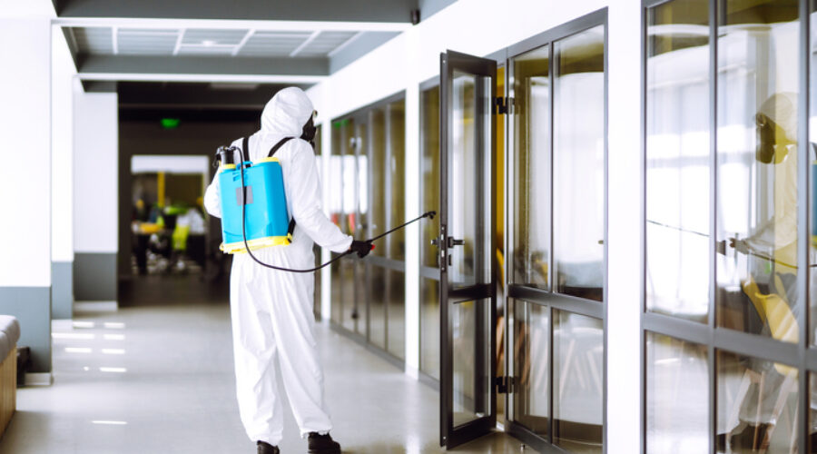 professional disinfecting services